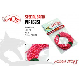 AQS Bpecial Braid x Assist Hooks mt10 lb200